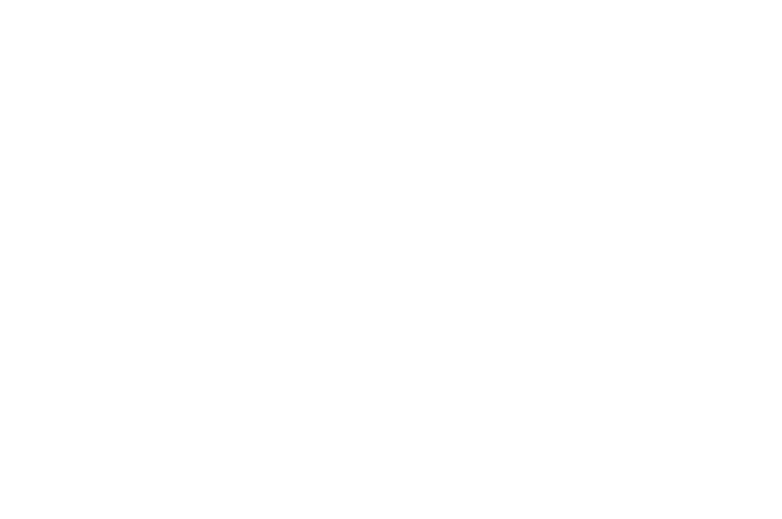 OFFICIAL SELECTION - TRIFF 2017 - Tryon International Film Festival - 2017 (1)